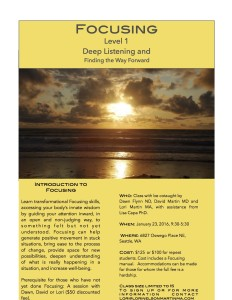 Focusing Flyer one day Level 1 JPG
